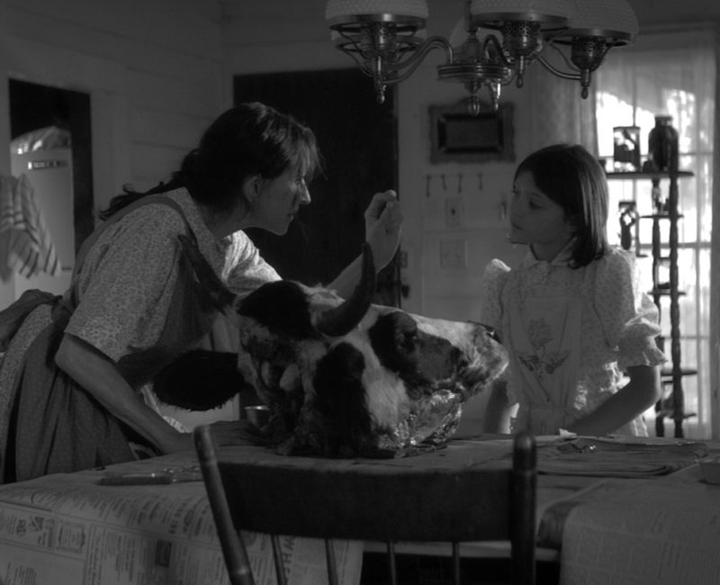 der cineast Filmblog - Review - The Eyes Of My Mother