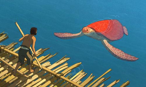 der cineast Filmblog - Review - Die Rote Schildkröte
